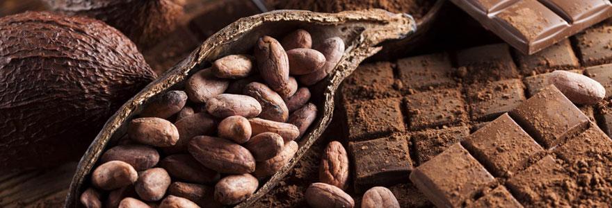 Chocolat artisanal de qualité en ligne